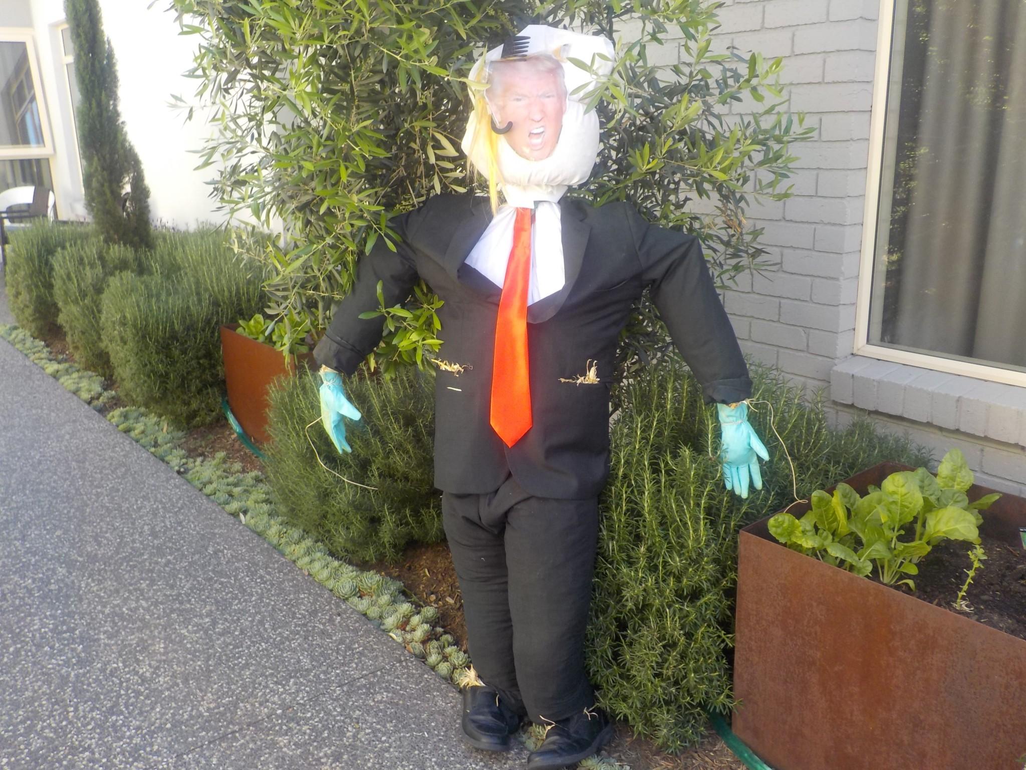 brunswick scarecrow